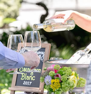 Pouring Sauvignon Blanc at outdoor event