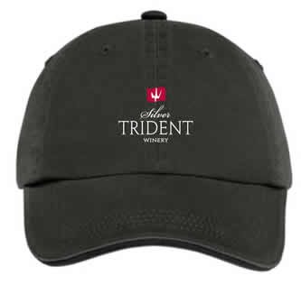 STW Logo Hat - Black