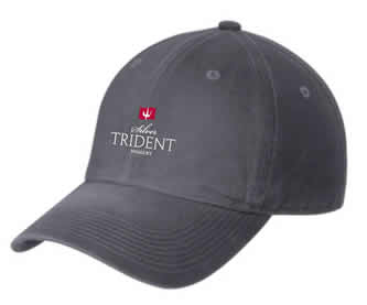 STW Logo Hat - Grey